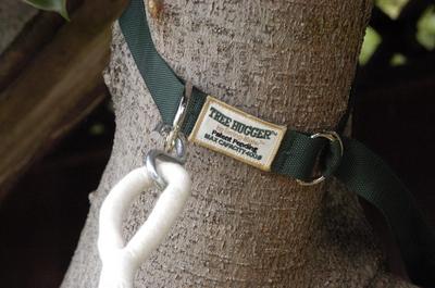 Hammock Tree Hugger Straps